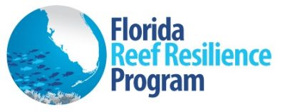 Florida Reefs Resilience Program Monitoring Shows Less Coral Bleaching than Previous Years, but More Prevalence of Disease