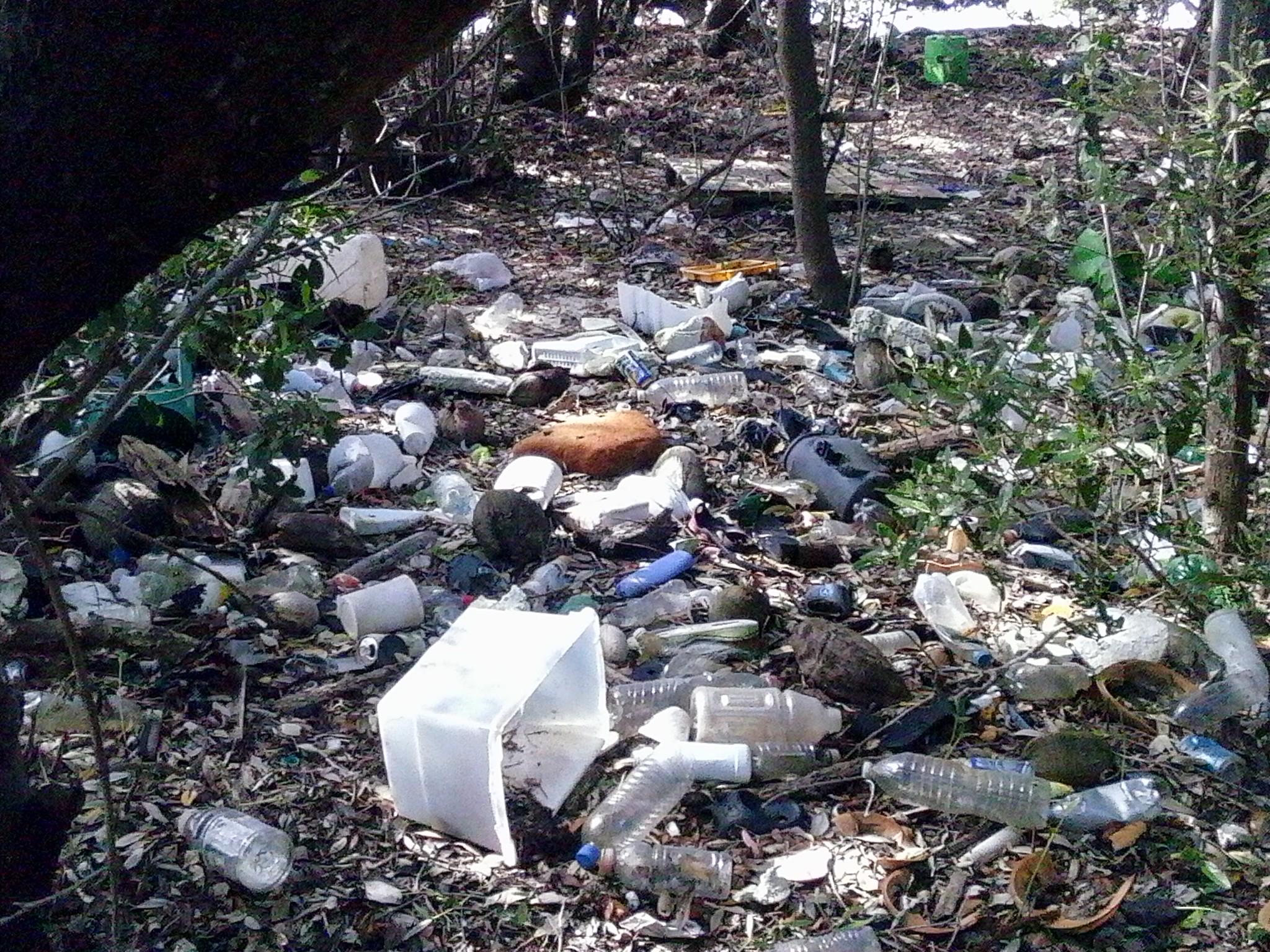 garbage on shore