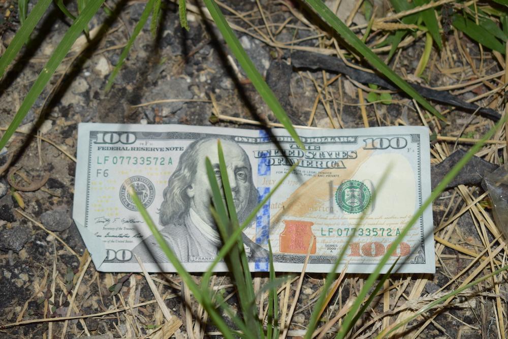 treehouse murder the hundred dollar bill