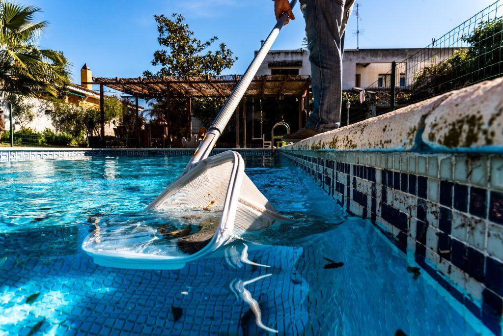 best san antonio pool cleaning service shavano park stone oak alamo heights