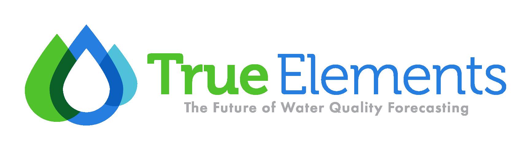 True Elements-Logo Design-01