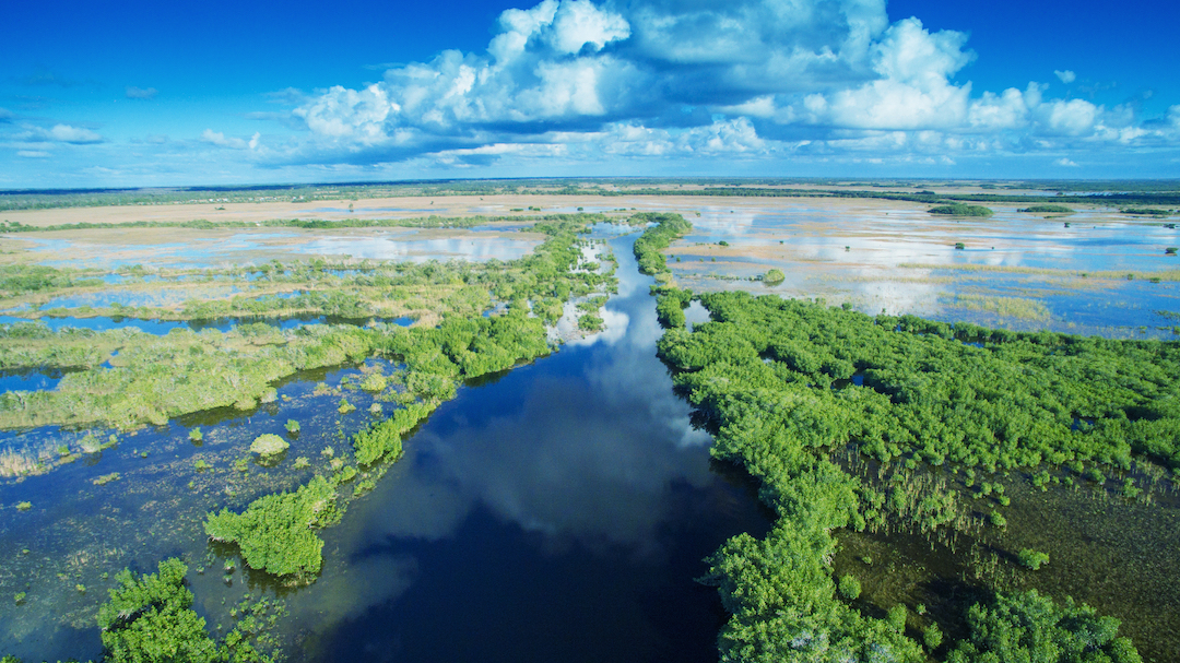 trueelements-true-elements-florida-everglades-resource-planning