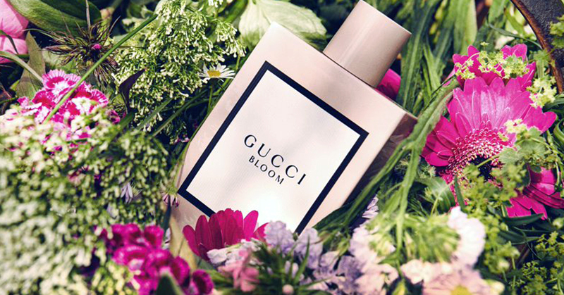 Best Fresh Scent Perfumes 2018