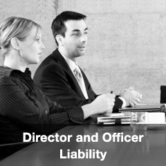 Director and Officer Liability