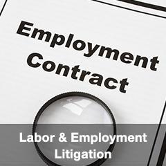 Labor & Employment Litigation