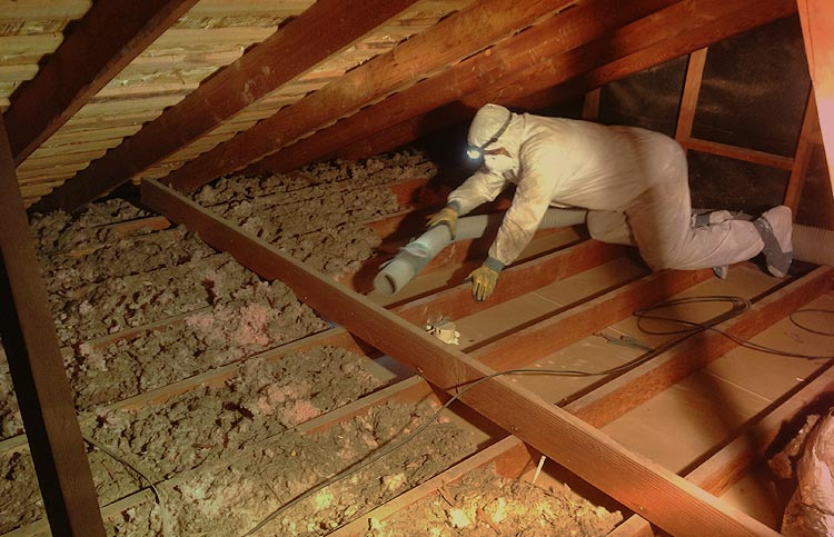 Attic Ventilation: The Key to Better AC Performance