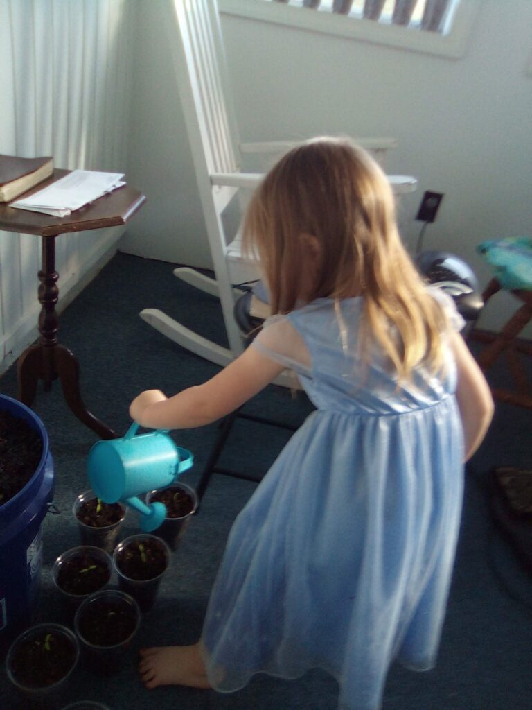 Care of environment, Montessori Toddler, Gardening with Children