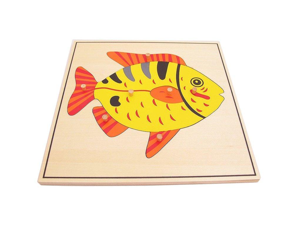 Montessori-Fish-Puzzle