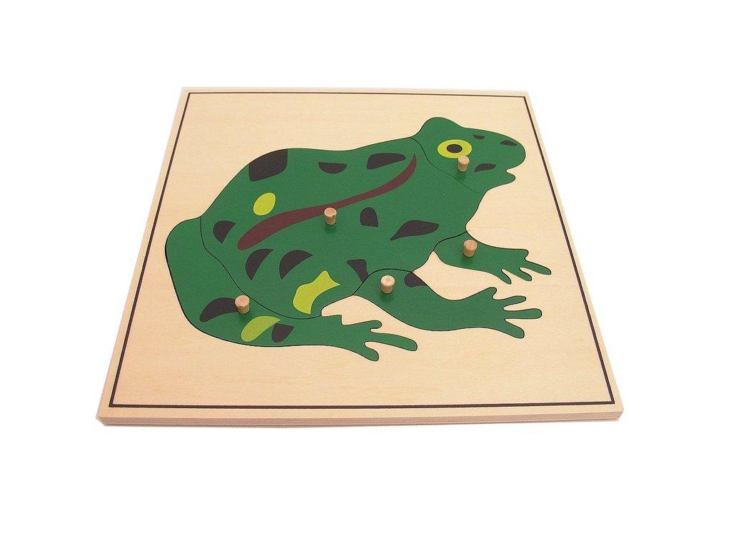 Montessori Frog Puzzle