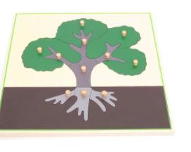 Parts-of-a-Tree-Puzzle Montessori