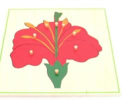 Parts of the Flower Puzzle Montessori