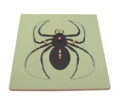 Montessori Spider Puzzle