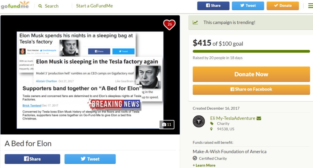 Bed for Elon