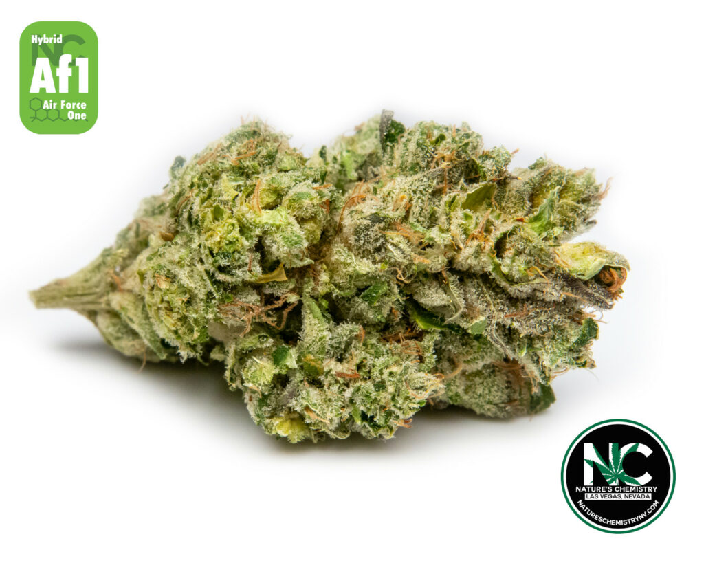 AIR FORCE ONE - (Skunk #1 X Unknown)
