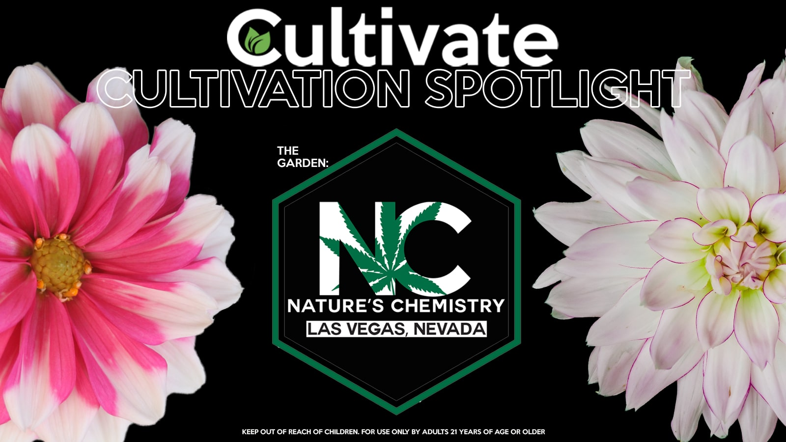NATURECHEMFLOWER