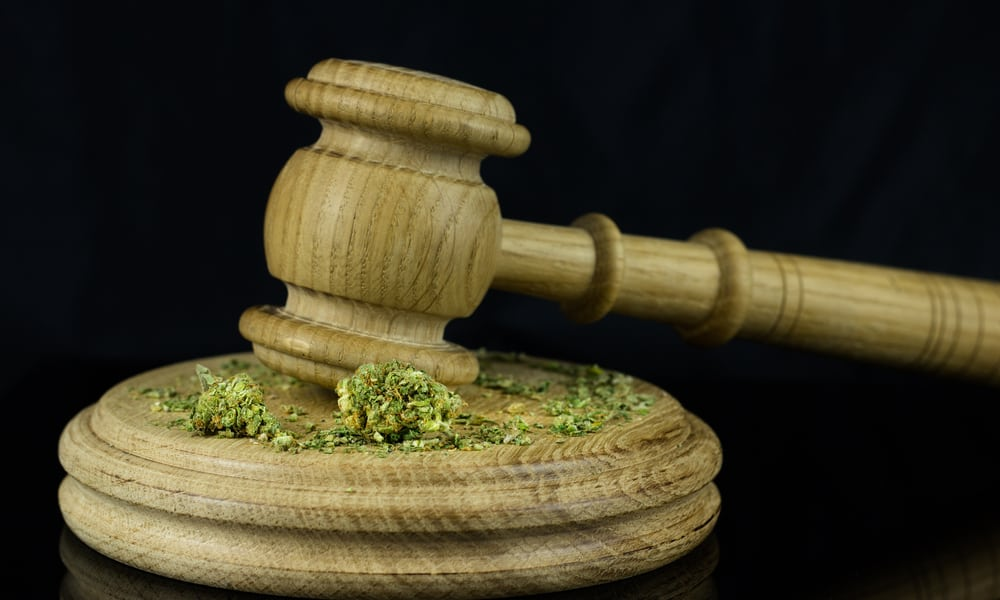 Cultivate Dispensary Las Vegas South Dakota's Recreational Marijuana Law To Be Challenged In Court