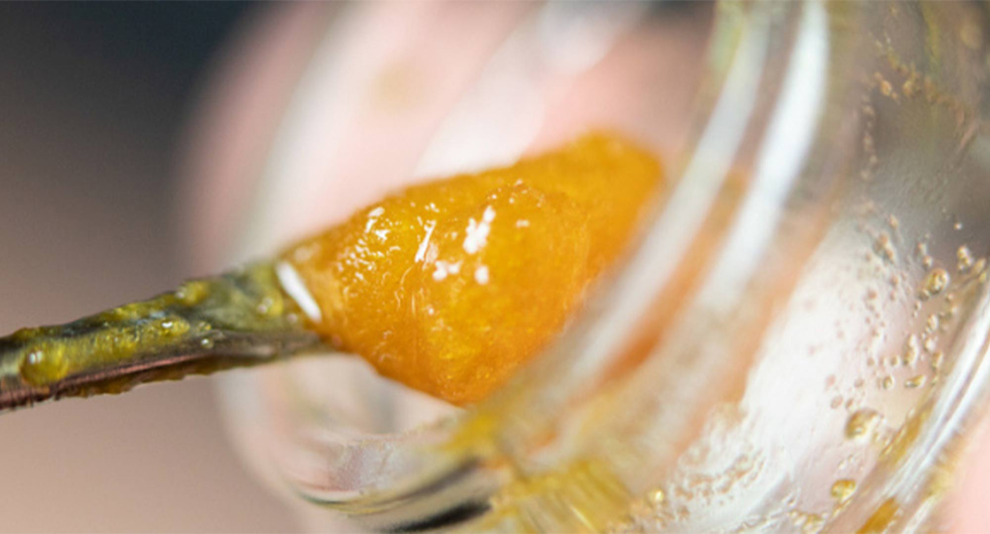 Cultivate Las Vegas dispensary. Resin vs. Live Resin vs. Rosin: What's the Difference?