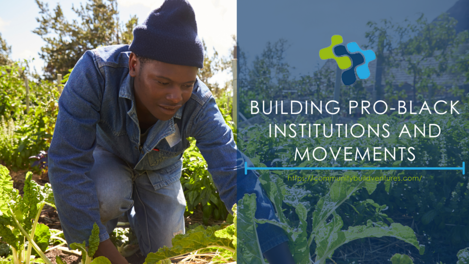 Building Pro-Black Institutions and Movements