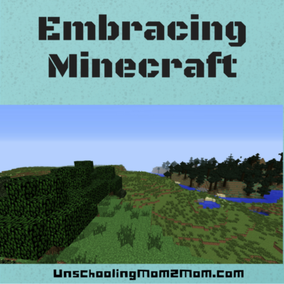 Embracing Minecraft