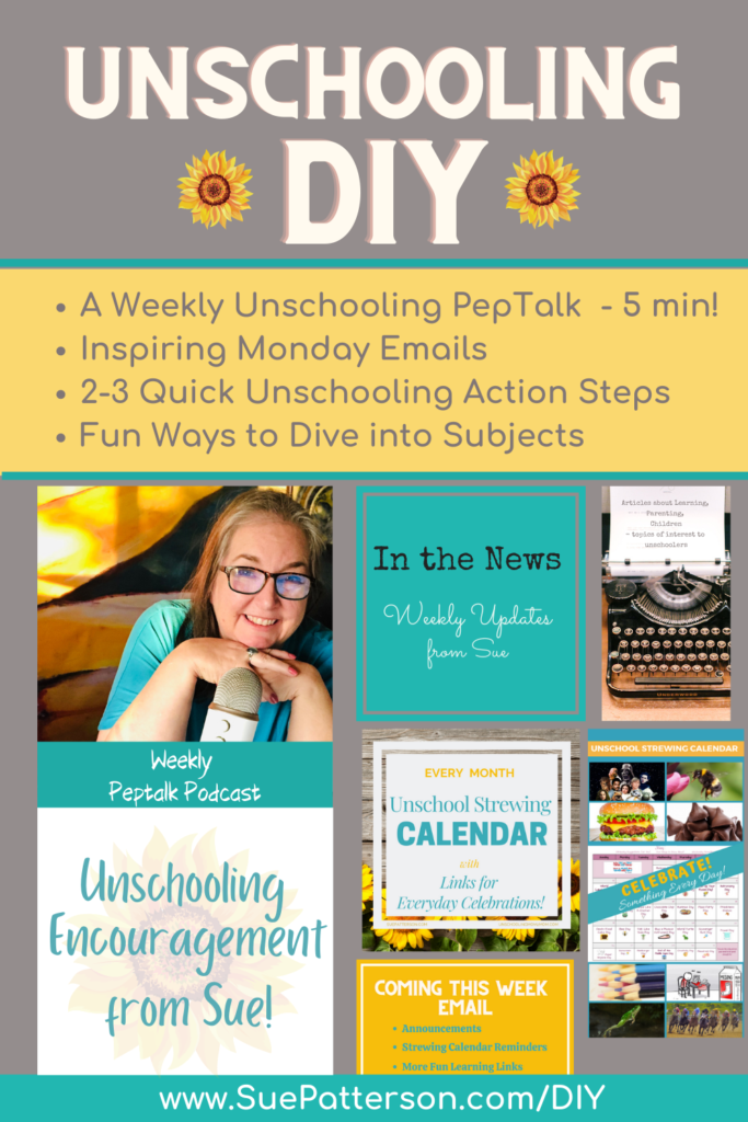 Unschooling DIY with Sue - pin