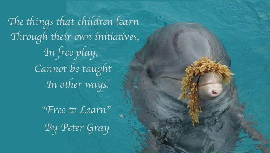 Unschooling Special Needs Facebook Cover Photo