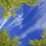 sky ceiling wispy clouds