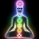 Chakras in Lotus