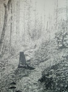 """A Path Through the Woods"", pencil drawing"