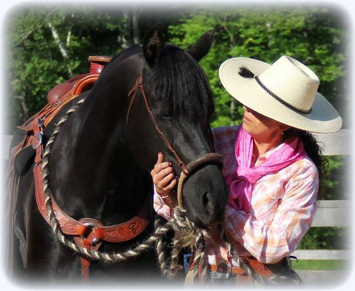 Horse grooming tips2