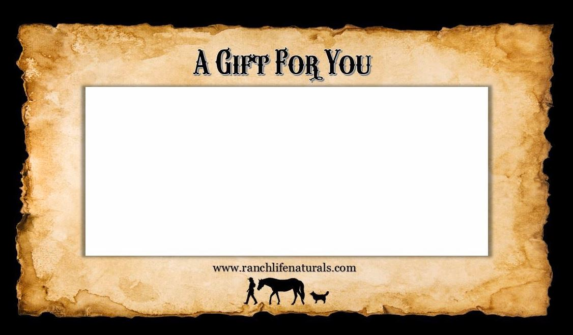 Gift Card01