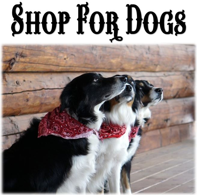 All Hair & Skin Products For Dogs