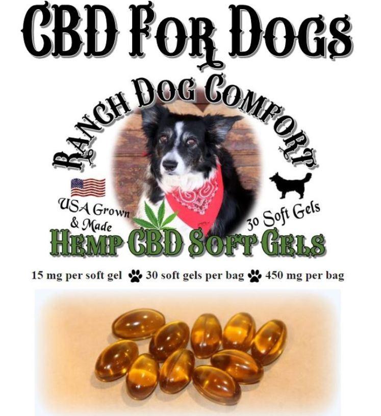 Hemp CBD for Dogs
