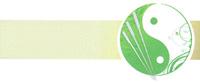 Sadlon Logo 200px wide