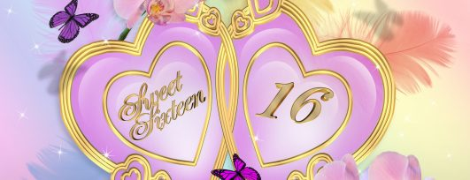 Plan A Super Sweet Sixteen Perfectly