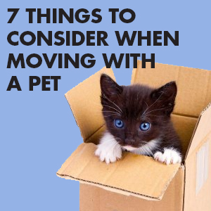 moving with a pet