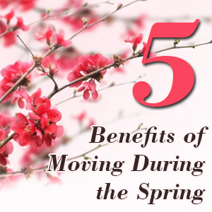 moving in the spring