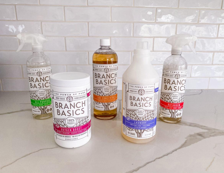 Branch Basics