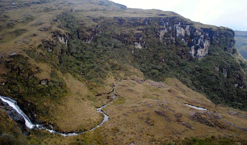 Noticias ambientales Colombia, naturaleza, fauna, flora, parque nacional, parques nacionales, Esfera VIVA, actualidad, actualidad ambiental, parques naturales