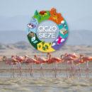 Ciclo siete, semana por la sostenibilidad en Iberoamérica, Día de la Tierra, sostenible, Esfera Viva, medio ambiente, noticias ambientales colombia, Medellín, Portafolio Verde, Esfera Ambiente y Paisaje