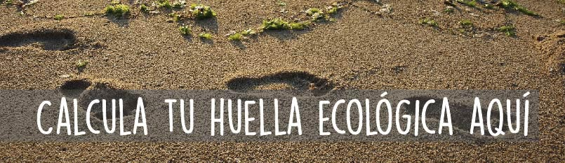 Huella, ecológica, huella ecológica, footprint, beach, ecological footprint