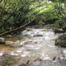 Esfera Viva, San rafael, antioquia, oriente de antioquia, rios, balnearios de San Rafael, medio ambiente, ecoturismo, fotografía