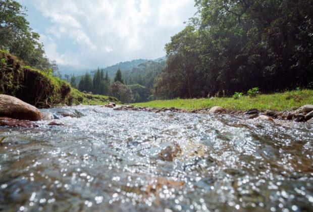 Río Medellín, río porce, Esfera Viva, tomás carrasquilla, cuentos ambientales, medio ambiente, río, agua, colombia, valle de aburrá, cuentos