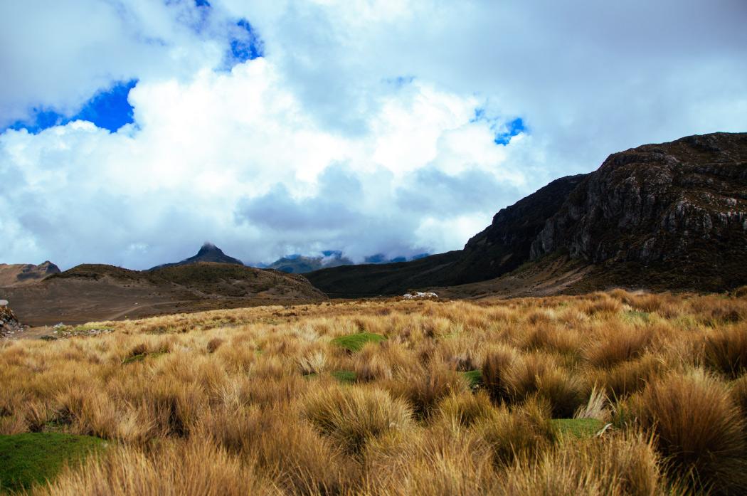 cerro guali, Nevado del ruiz, parque nacional los nevados, parques nacionales, colombia, ecoturismo, alta montaña, montañismo, senderismo, aventura colombia, lugares para viajar en colombia, esfera viva, blogs ambientales, medio ambiente