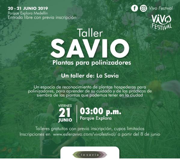 lasavia-taller-vivo-festival