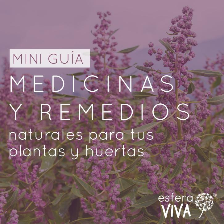 guia remedios para huertas y plantas