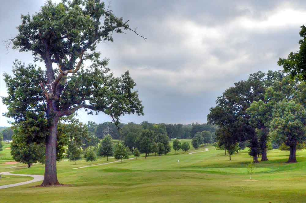 Carthage-Golf-Course,-Carthage,-MO-Tree