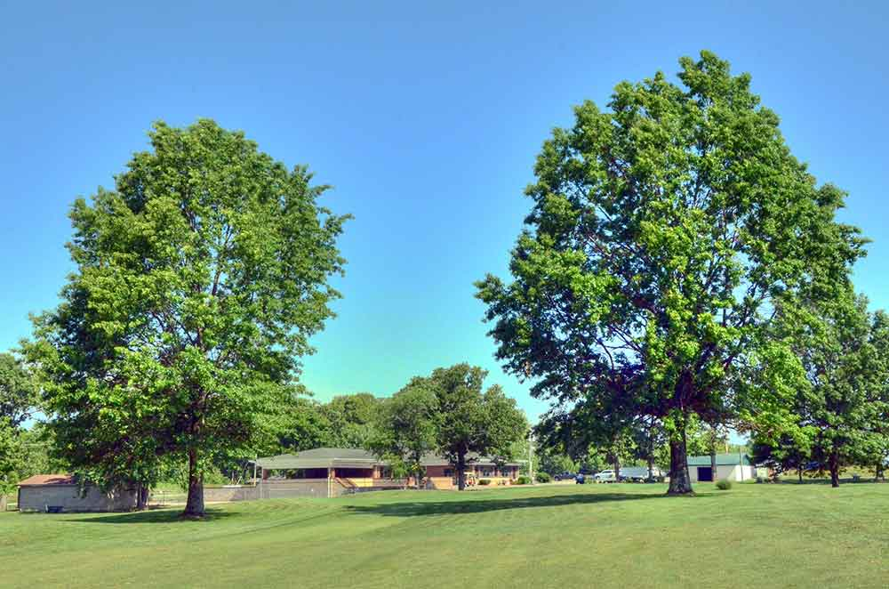 Cassville-Golf-Club,-Best-Golf-Courses-in-Southwest,-MO-Trees
