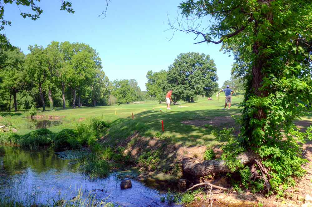 Eagle-Creek-Golf-Club,-Joplin,-MO-Drive
