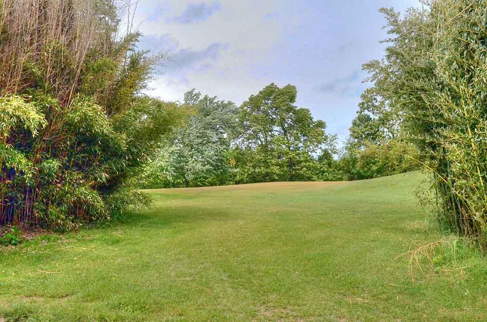Oak-Hills-Country-Club,-Dixon,-MO-Bushes