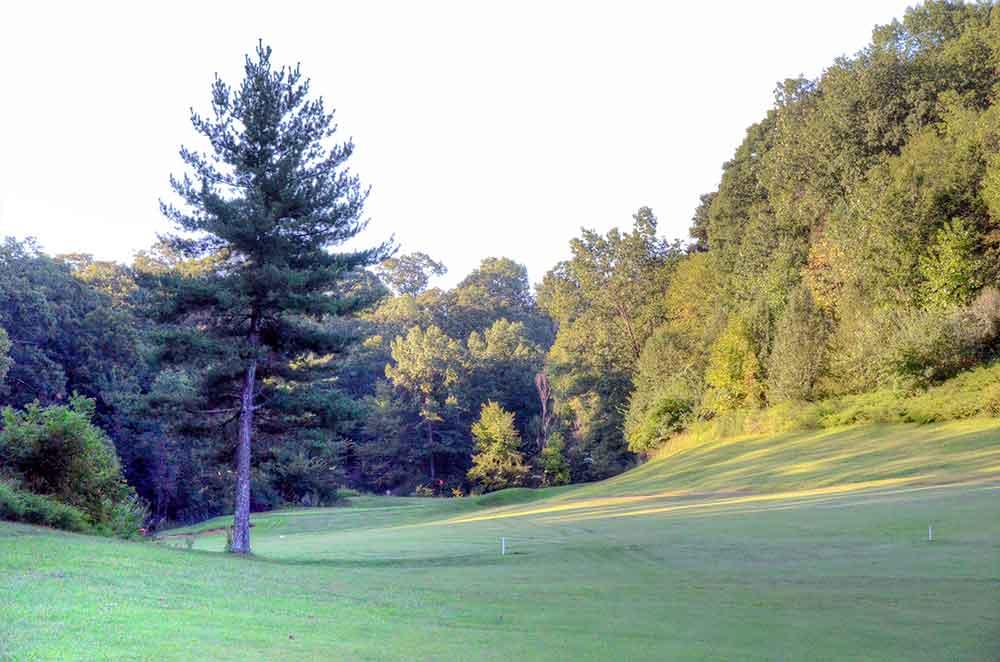 Sugar-Creek-Golf-Course,-High-Ridge,-MO-Pine